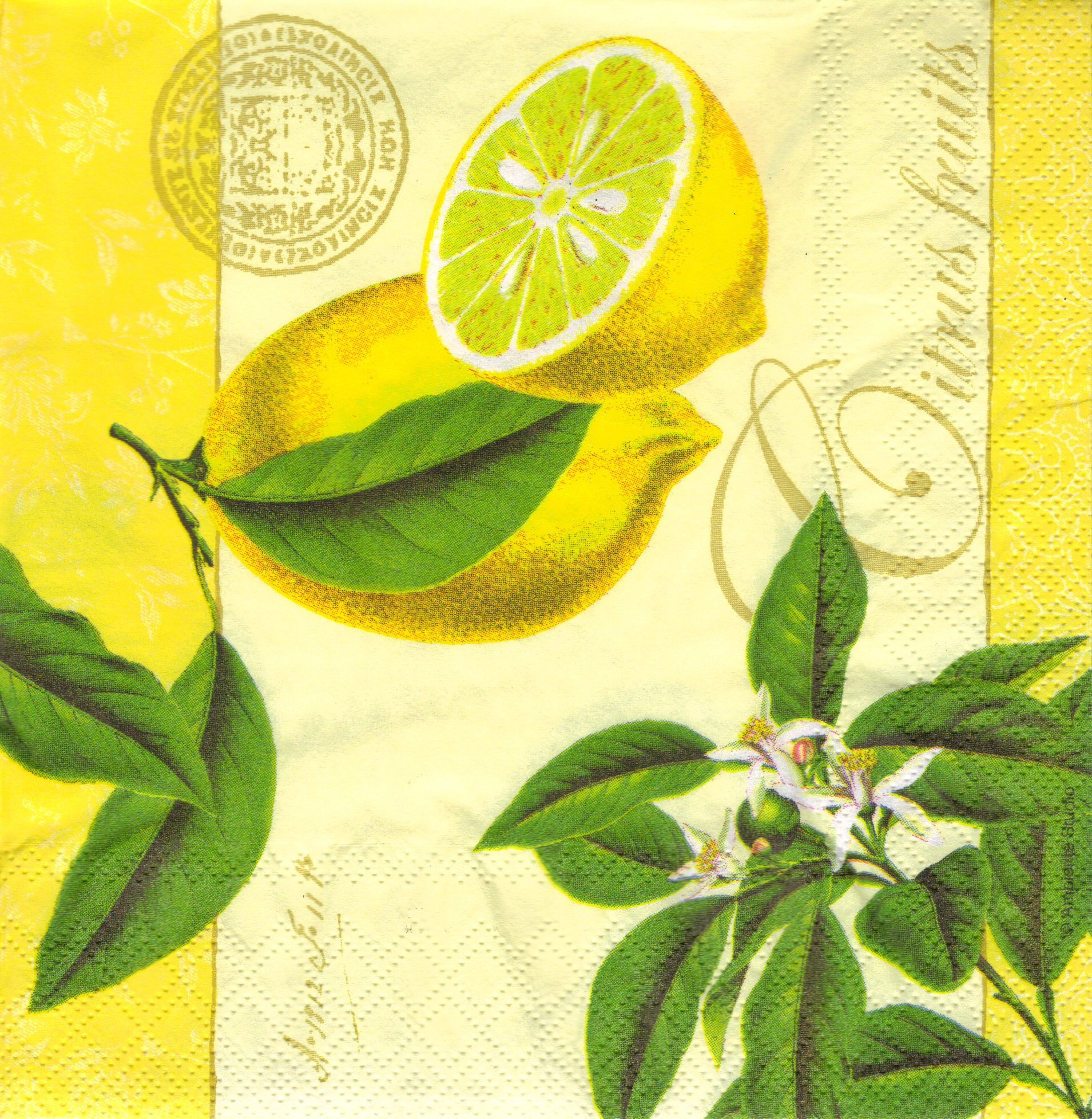 Serwetka do decoupage Ambiente 26-13305096 citrus fruits yellow