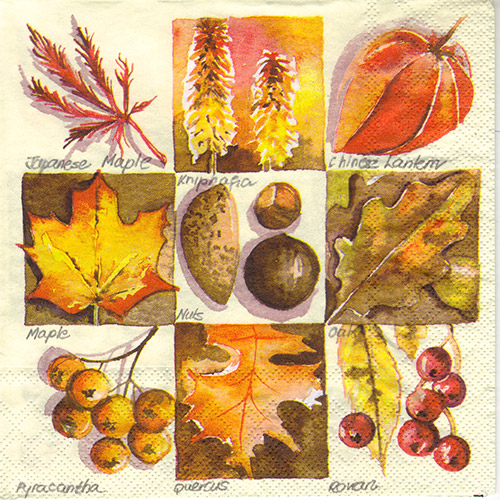 Serwetka do decoupage Ambiente 31-13307365 autumn square