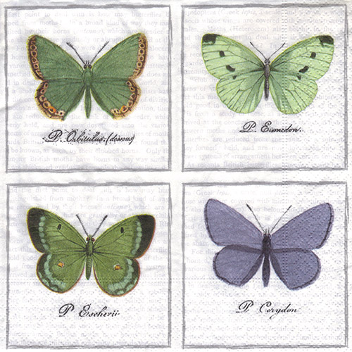 Serwetka do decoupage SAGEN 31-80056 big butterlies